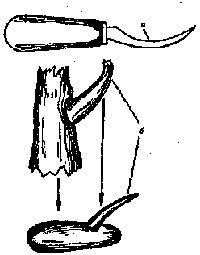 Техника плетения из ивы.