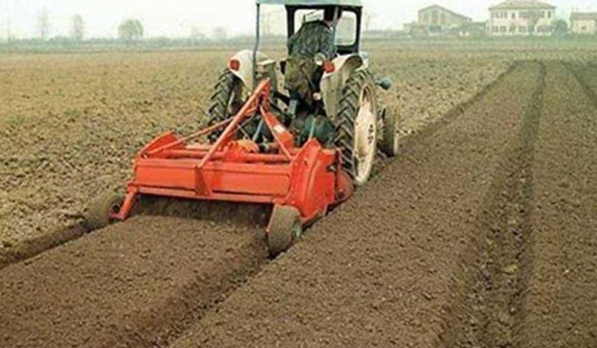 Обработка почвы под овощные культуры