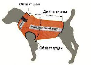 Как связать попону для собаки своими руками