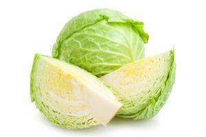 Болезни и вредители капусты белокочанной