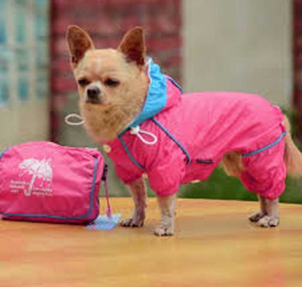 одежда для собак своими руками выкройки